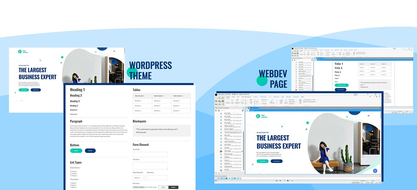 Importe estilos de un tema WordPress